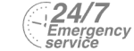 24/7 Emergency Service Pest Control in Archway, N19. Call Now! 020 8166 9746